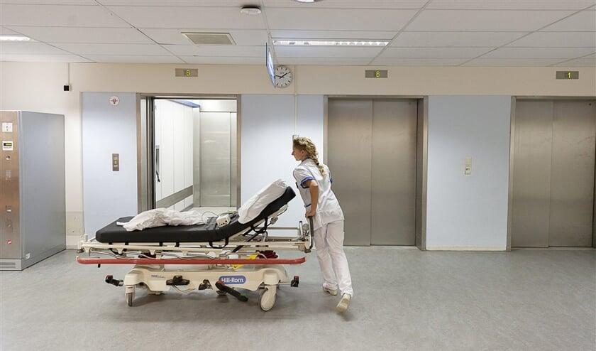 De wet hecht nu te veel waarde aan een diploma; de ervaring van verpleegkundigen telt net zo goed mee.  (Harry Cock)