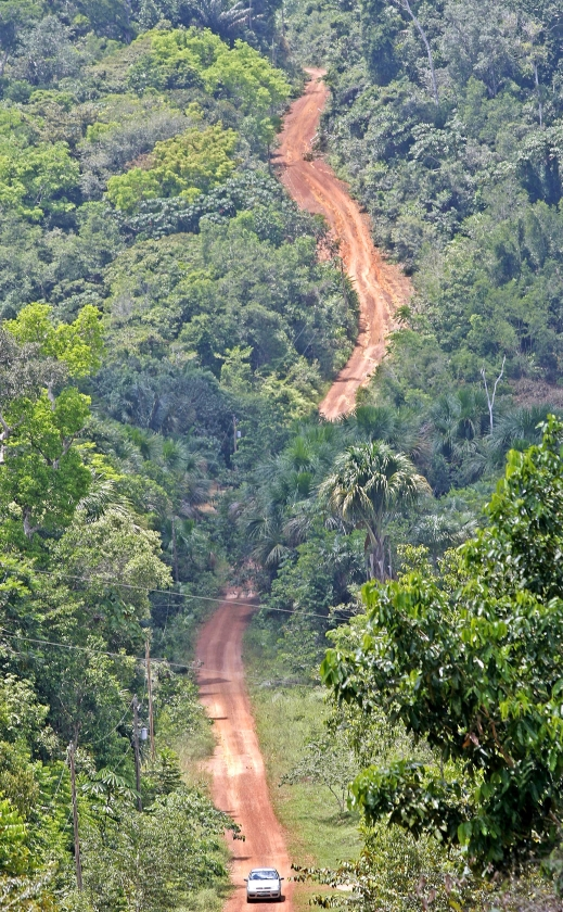 Voor bescherming van het regenwoud is het nodig de bewoners alternatieve inkomstenbronnen te bieden. Dan is er reden het bos intact te houden.   (ap / Andre Penner en getty / Ricardo Funari)
