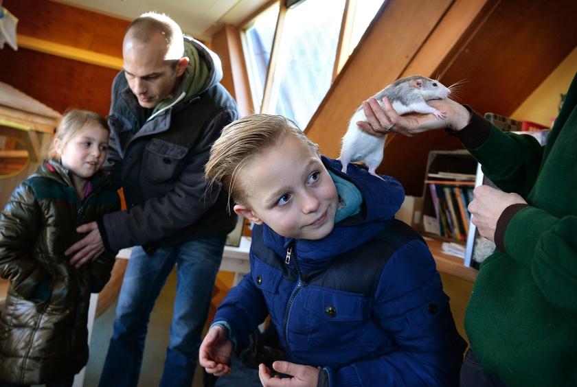 Ronja (links) en Pelle met hun vader Joris bij kinderboerderij Horsterpark. Pelle krijgt uitleg over een ratje.  (Marcel van den Bergh)