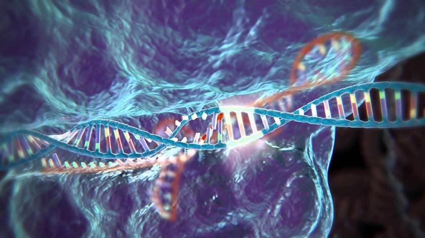 Crispr/Cas9 zorgt voor een doorbraak in de gentechnologie. In plaats van maanden werk dat tienduizenden euro's kost, is er in micro-organismen voor een paar honderd euro in een week tijd al resultaat te boeken.  (Youtube)
