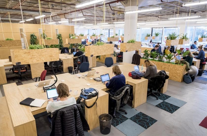 Zzp'ers aan het werk in een verzamelgebouw in Amsterdam. Veel zzp'ers zijn eerder bevlogen vakmensen dan calculerende entrepreneurs.  (anp / Lex van Lieshout)