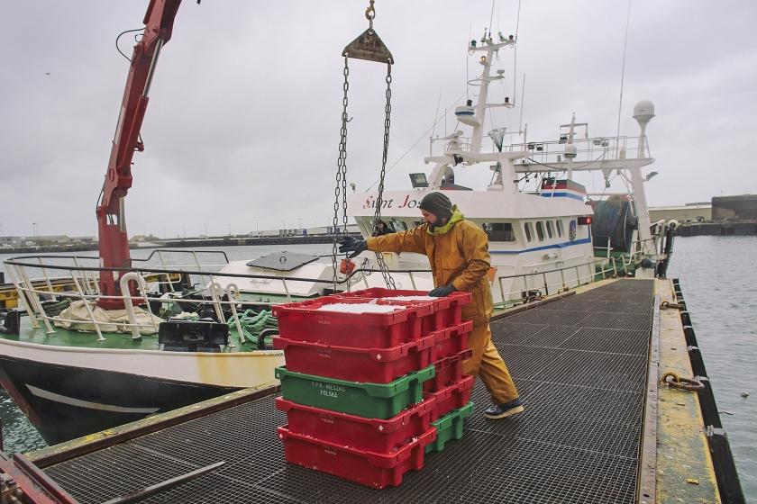 Aan de Quai Gambetta in het Franse Boulogne-sur-Mer lost een visser zijn vangst. Franse vissers brengen steeds minder vis aan wal, doordat Nederlandse collega's hen met een elektrische vismethode voor zijn.  (Bart Koetsier)
