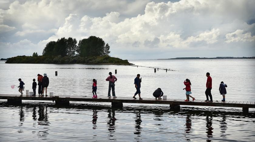 Het Grevelingenmeer. De bodem is zwart; alleen zwavelbacteriën kunnen er overleven.  (Marcel van den Bergh)