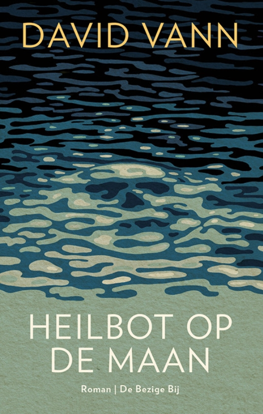Literatuur: Heilbot op de maan - David Vann