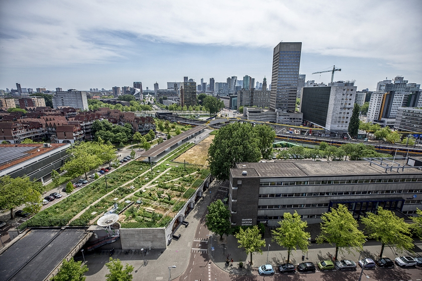 Voormalig station Hofplein is tegenwoordig een park.  (Raymond Rutting)