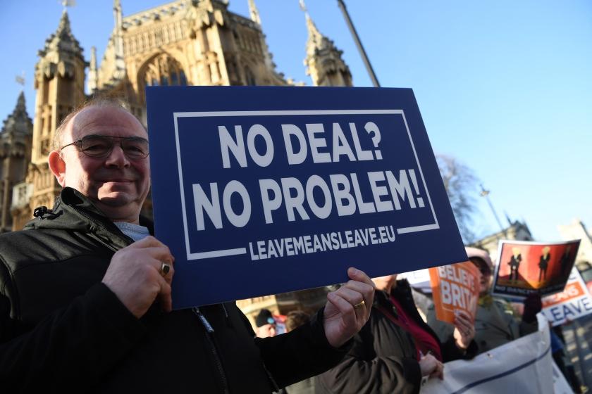 Probrexitaanhangers demonstreren voor het parlementsgebouw in Londen. 'Ik begrijp wel waarom zo veel Engelsen voor brexit hebben gestemd.'  (epa / Neil Hall)