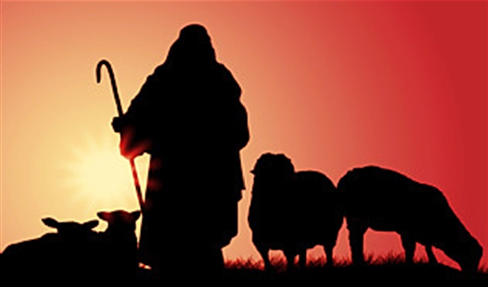 Nieuwe Bijbelliederen van Jannette Koelewijn en Koos Tillema: Wandelen achter de Herder