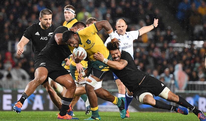 Wedstrijdbeeld van een ontmoeting tussen rugbyteams van Nieuw-Zeeland (in het zwart) en Australië.  (epa / David Rowland)